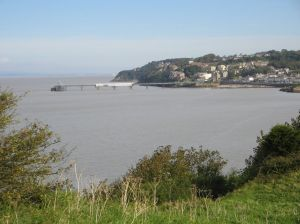 Clevedon from Poet's walk
