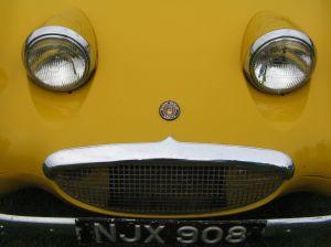 yellow frog eyed sprite