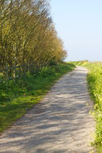 walkinggolfcoursefootpath